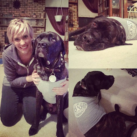 Drinking Buddy Muscle Shirt for Dogs