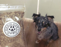 The Shake Food Topper for Dogs