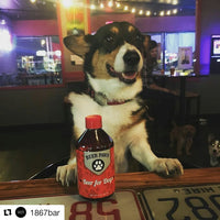 Party Packs of Beer for Dogs