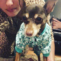 Pajamas for Dogs and Cats
