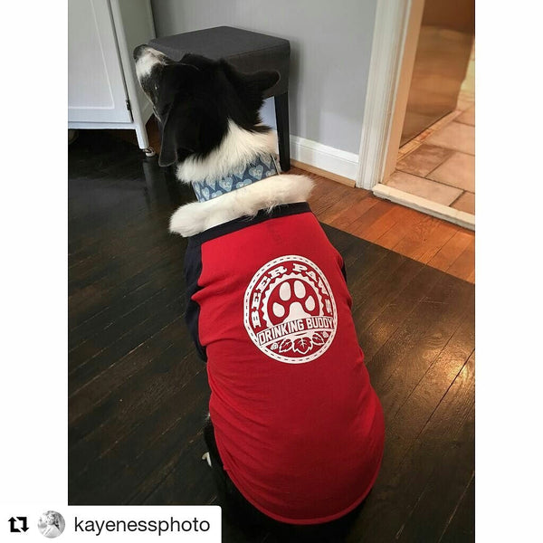 Drinking Buddy Baseball Tee for Dogs and Cats
