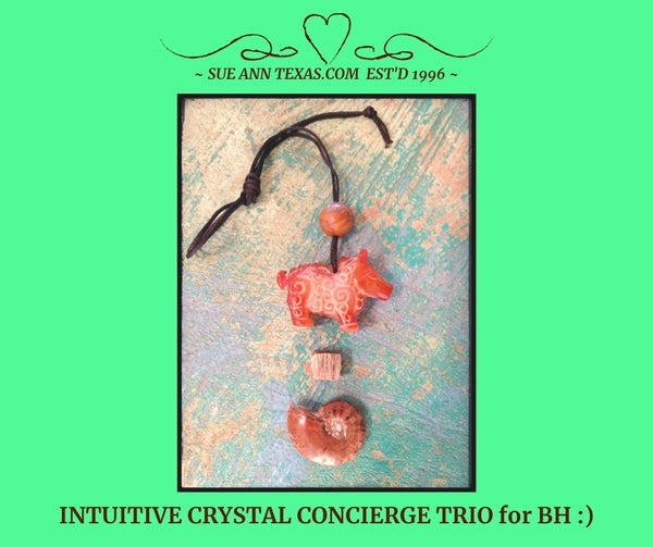 SOLD: For BH. Concierge Service. Special Ancient Horse with Polished Ammonite Fossil & Free Pyrite Cube. Empowering! - SueAnnTexas.Com & The Shoppe