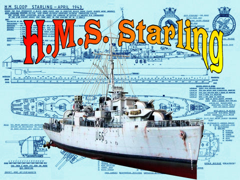 Listing is for very detailed Scale Drawings  H.M.S. Starling Black Swan-class sloop