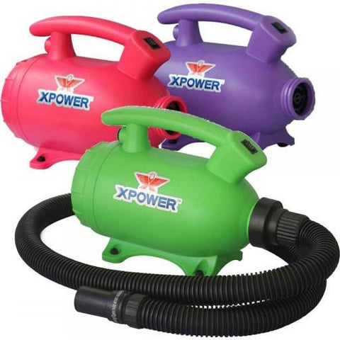 Pet Dryer - NEW! XPOWER B-55 Home Pet Dryer Home Dog Drying Grooming Solution BEST VALUE!