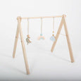 Sky Reach Play Gym Toys - Wildwood Lane