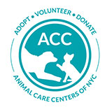 Animal Care Centers of New York City