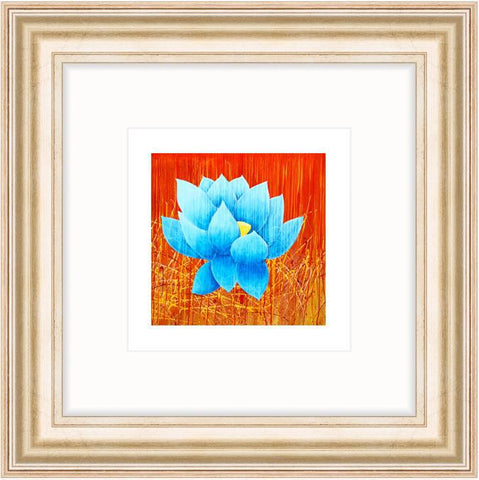 Blue Lotus - Framed Lotus Print