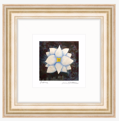 Padma - Framed Lotus Print