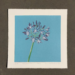 Limited Edition Print Signed Reduction Linocut Agapanthus - Day