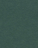 Spruce Green Photo Paper Backdrop