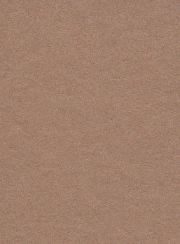 Hazelnut Photo Paper Backdrop