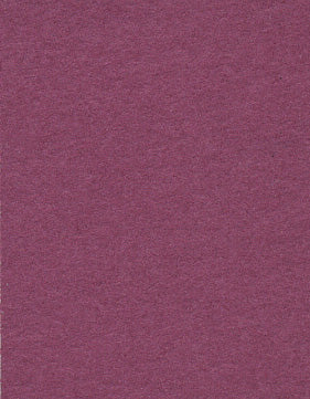 Damson Photo Paper Backdrop