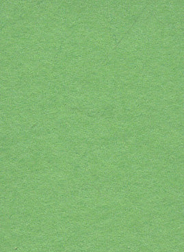 Summer Green Photo Paper Backdrop