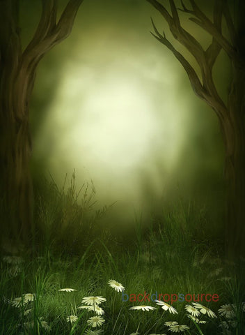 Seaweed Green Light in Forest Print Photography Backdrop