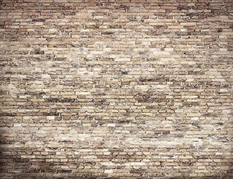 Brick Wall Indelible Print Fabric Backdrop