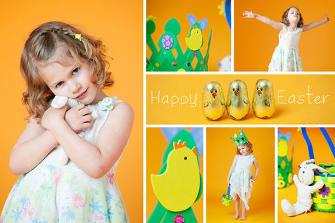 Sunflower Photo Paper Backdrop