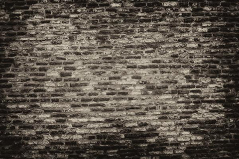 Grunge Brick Wall Backdrop