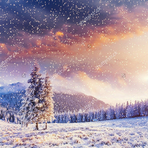 Winter with Soft Highlights and Snow Flakes Print Photography Backdrop