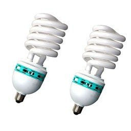 125W Fluorescent Light Bulbs Pair Accessory