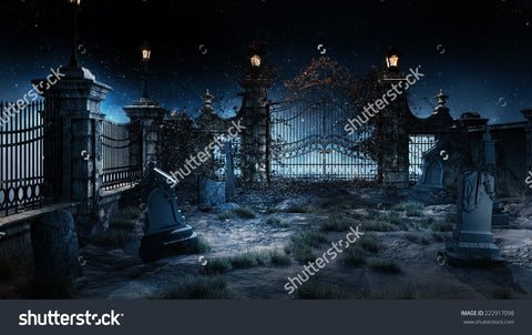 Old Cemetery with Iron Gate Print Photography Backdrop