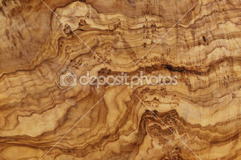 Plywood Theme Indelible Print Fabric Backdrop