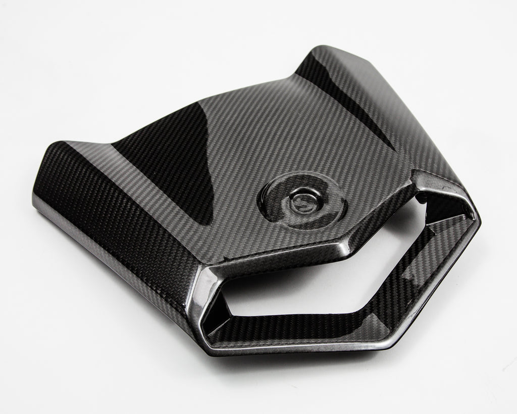 Agency Power Carbon Fiber Hood Can-Am Maverick X3