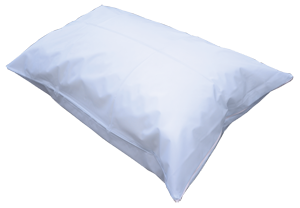 Disposable Pillow Case-10 Pack