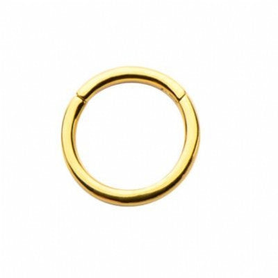Bg-Bhsr-14Ga - 1.6X10 Ss316L Gold Pvd Hinged Segment Ring (1.6Mm)