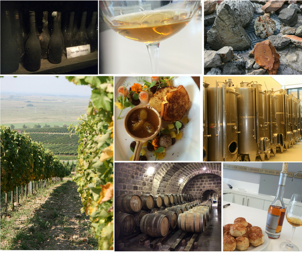 Tokaj one day wine tour