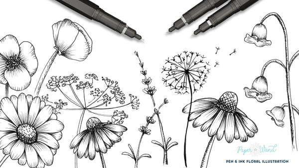 How to Draw Wildflowers - Floral Ink Illustration