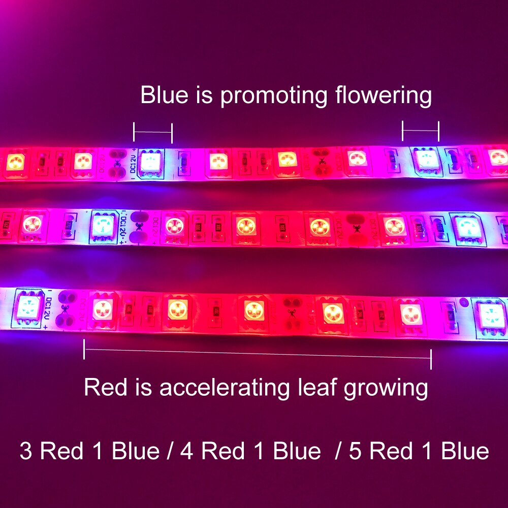 Plant Grow lights 5m Waterproof Full Spectrum LED Strip Flower phyto lamp Red blue 4:1 for Greenhouse Hydroponic+Power adapter - JustgreenBox