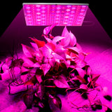Growing Lamps LED Grow Light Full Spectrum Plant Lighting Fitolampy For Plants Flowers Seedling Cultivation - JustgreenBox