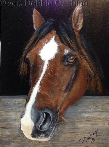 Rescued Horse e-Packet by Debbie Cushing