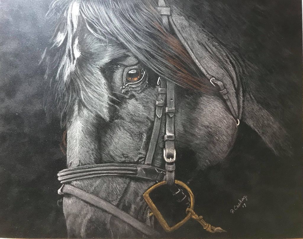 Black Beauty Colored Pencils Online Class by Debbie Cushing