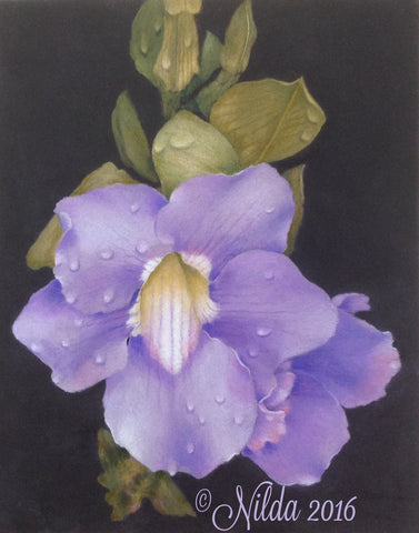 A Promise Colored Pencils Online Class by Nilda