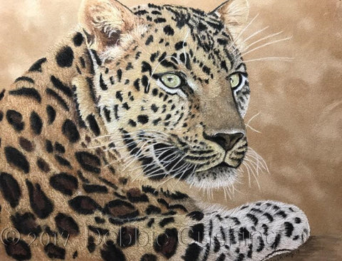 Leopard Colored Pencils Epacket by Debbie Cushing