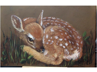 Fawn Acrylics e-Packet by Debbie Cushing