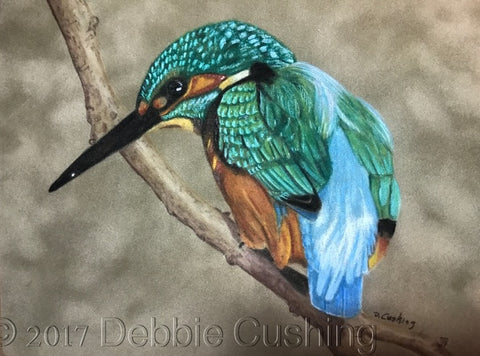 Kingfisher Colored Pencils Online Class by Debbie Cushing