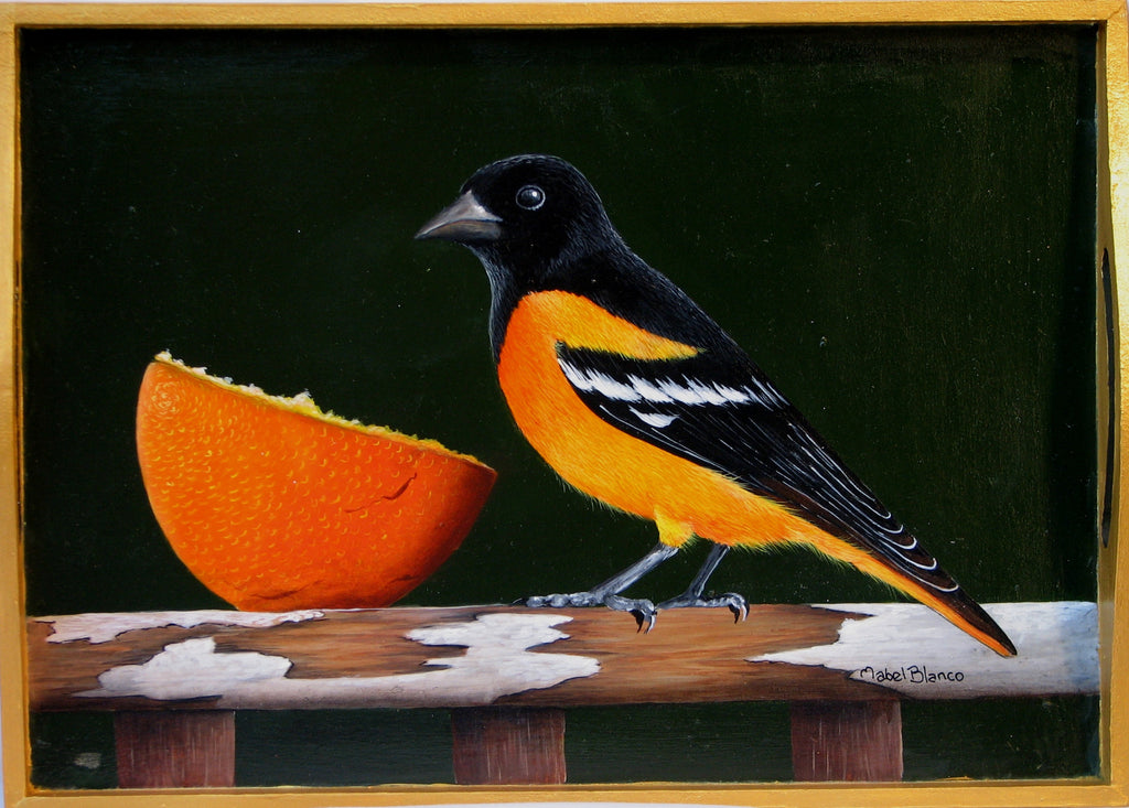 Oriole Eating Orange e-Packet by Mabel Blanco