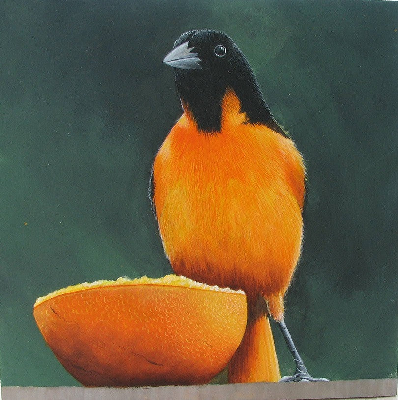 Oriole Acrylics e-Packet by Mabel Blanco