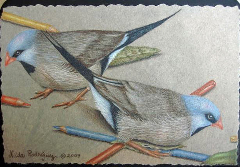 Shaft Tail Couple e-Packet in colored pencils by Nilda Rosa Rodriguez