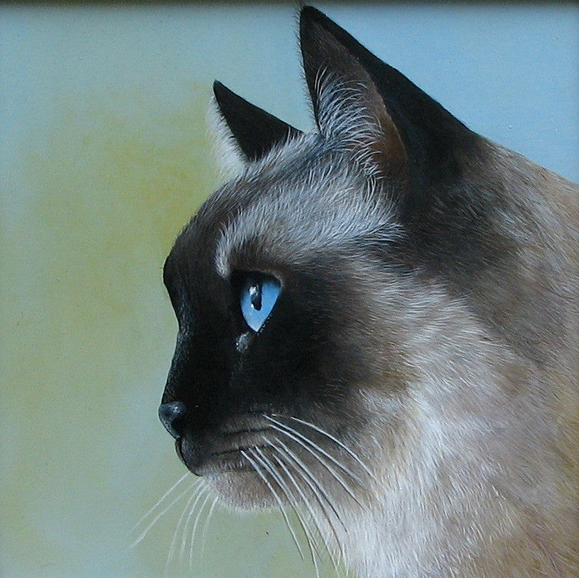 Siamese Cat e-Packet by Mabel Blanco