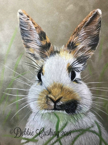 Sweet Bunny Colored Pencils Online Class by Debbie Cushing