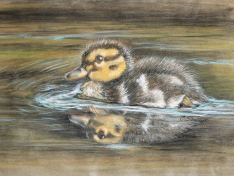 Reflections of a Duckling Online Class by Carole Sheftic