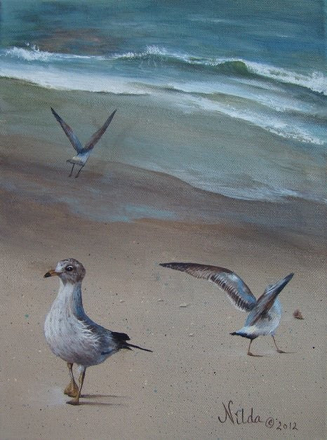 Seagulls by the Shore