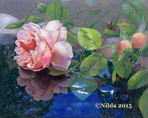 Summer Reflections Online Colored Pencils Class by Nilda