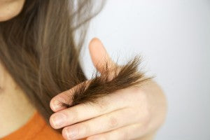 know if you have damaged hair, how to repair split ends