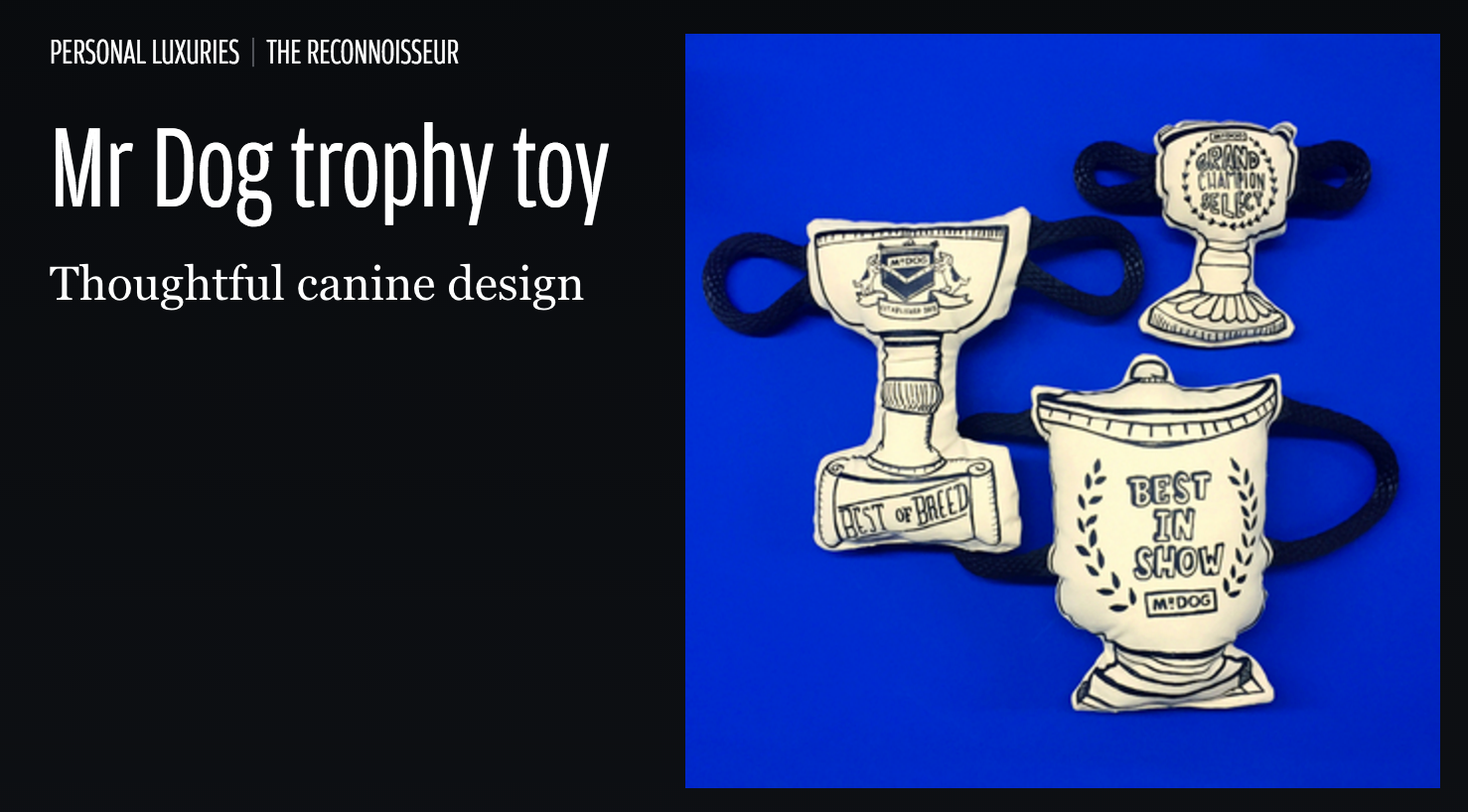 Trophy Toy: As seen in Financial Times
