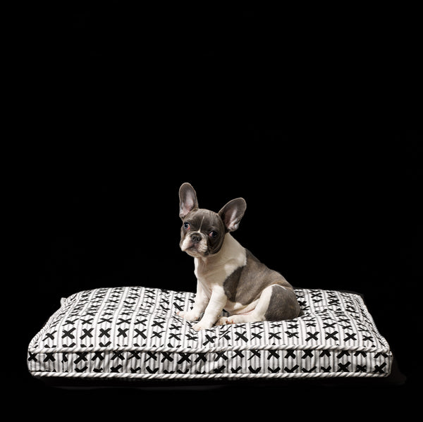 Classic X-Print Bed - Mr. Dog New York