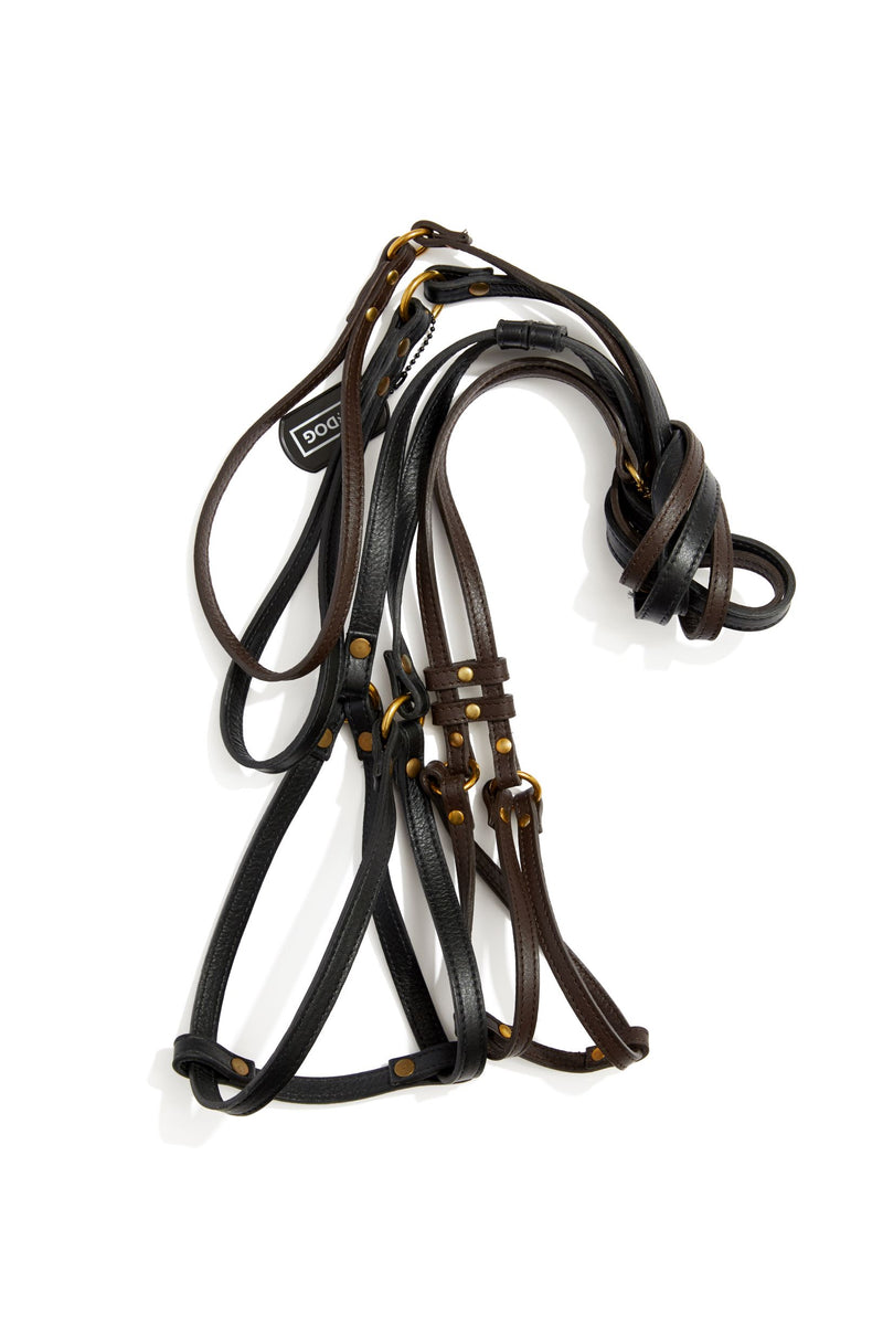 Step-In Dog Harness & Leash Leather